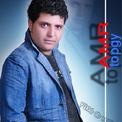 عمرو الطوبجي